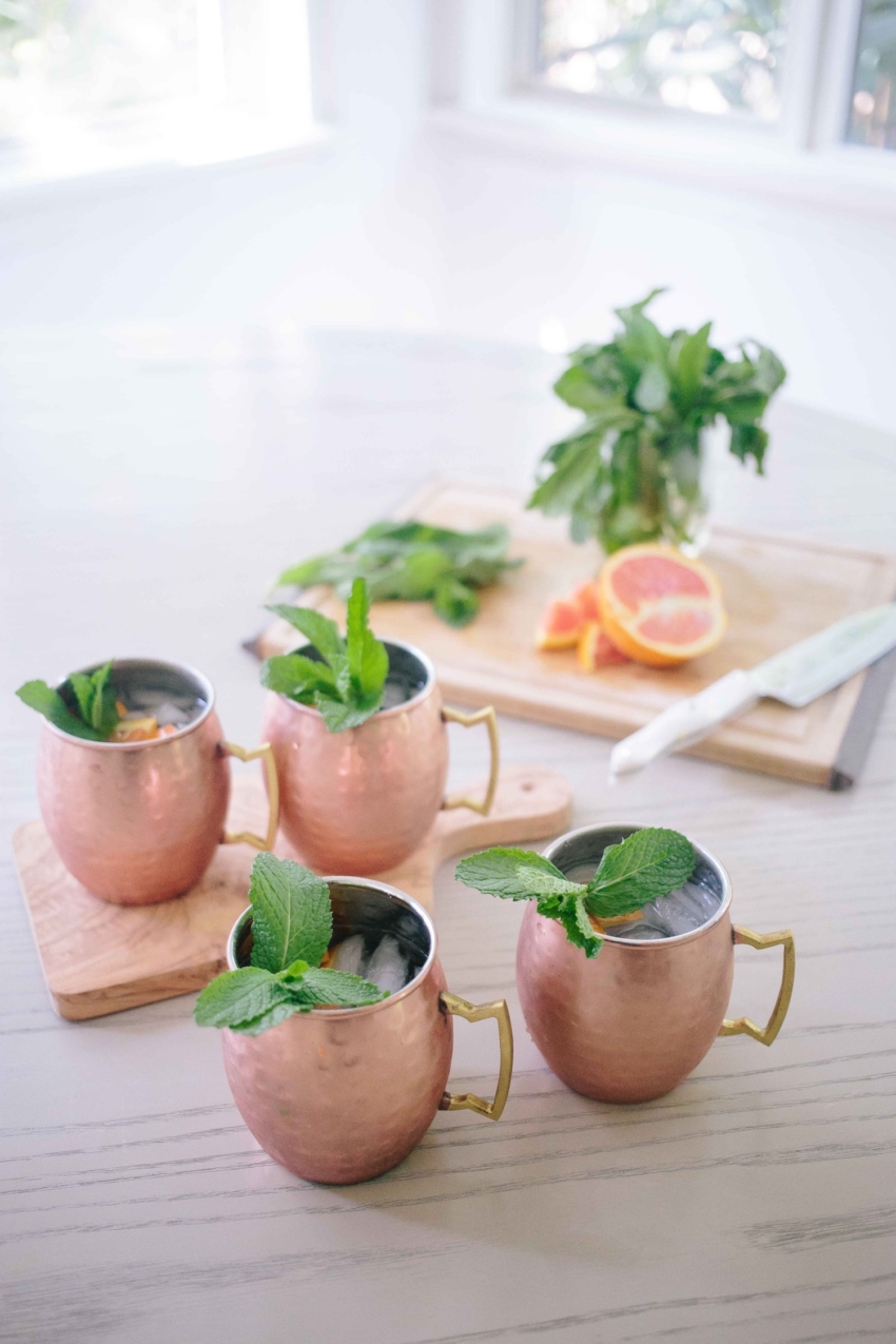 Prettiest Cocktails by the Fashionable Hostess - Moscow Mule REcipe
